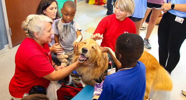 Children play with an MUSC therapy dog